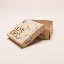 E20T-117Z202 , Malá krabička