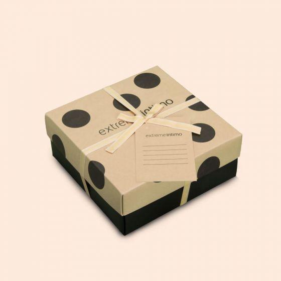 E21T-17Z207 , Malá krabice